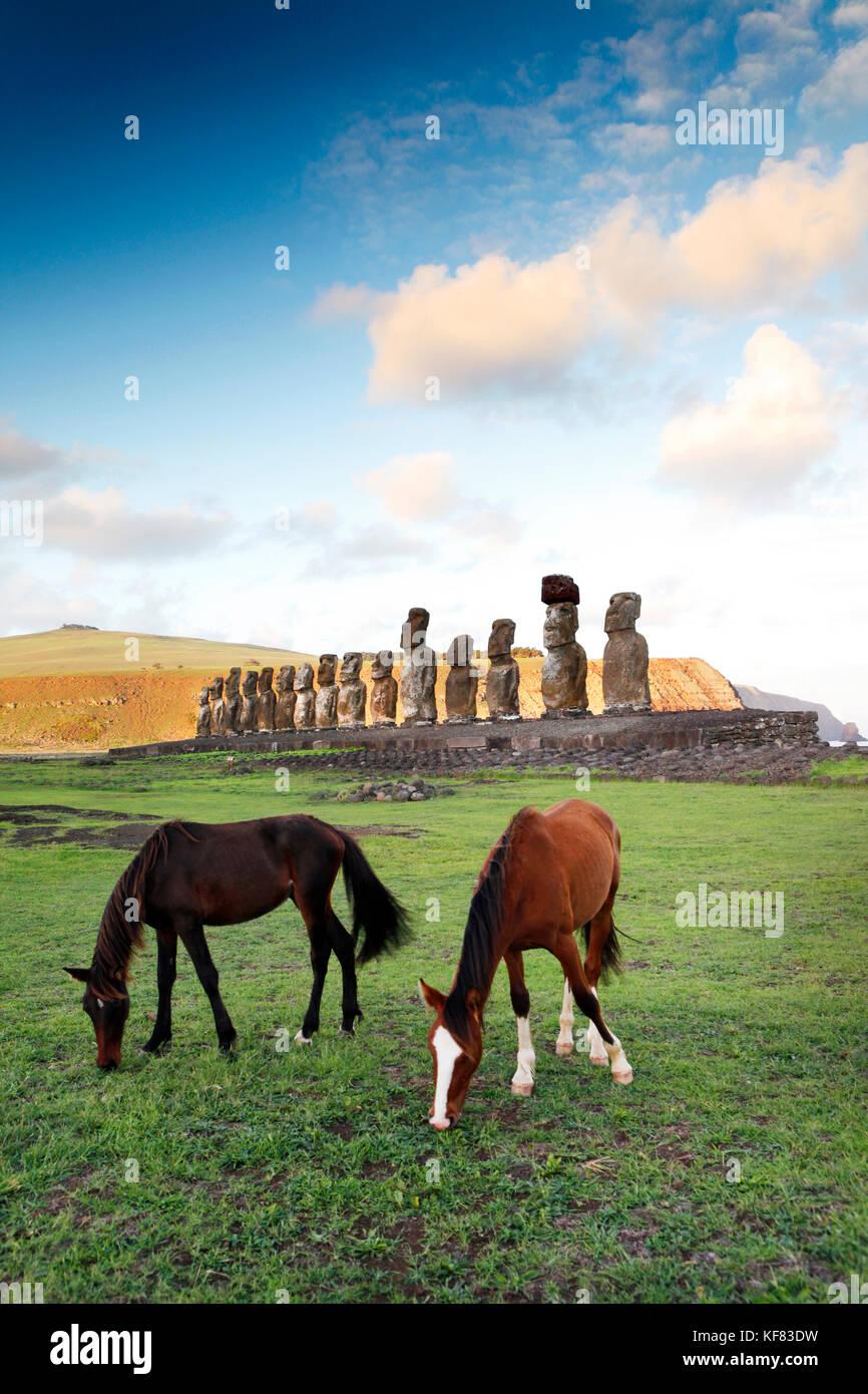 EASTER ISLAND, CHILE, Isla de Pascua, Rapa Nui, horses graze in front of the Moai statues at the Ahu Tongariki site - Stock Image