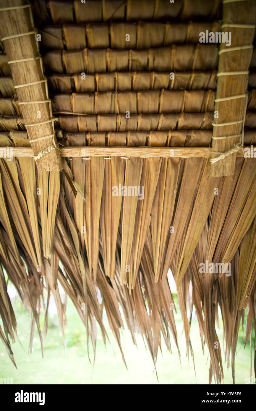 INDONESIA, Mentawai Islands, Kandui Surf Resort, detail of thatched roof - Stock Image