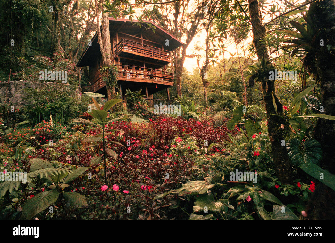 PANAMA, David, Guadalupe, Los Quetzales Lodge, Swiss style chalet in the cloud forest, Volcan Baru National Park - Stock Image
