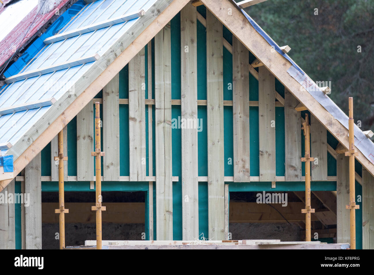 Scottish cabin being renovated on the Rothiemurchus Estate in the Rothiemurchus Forest with new board and batten - Stock Image