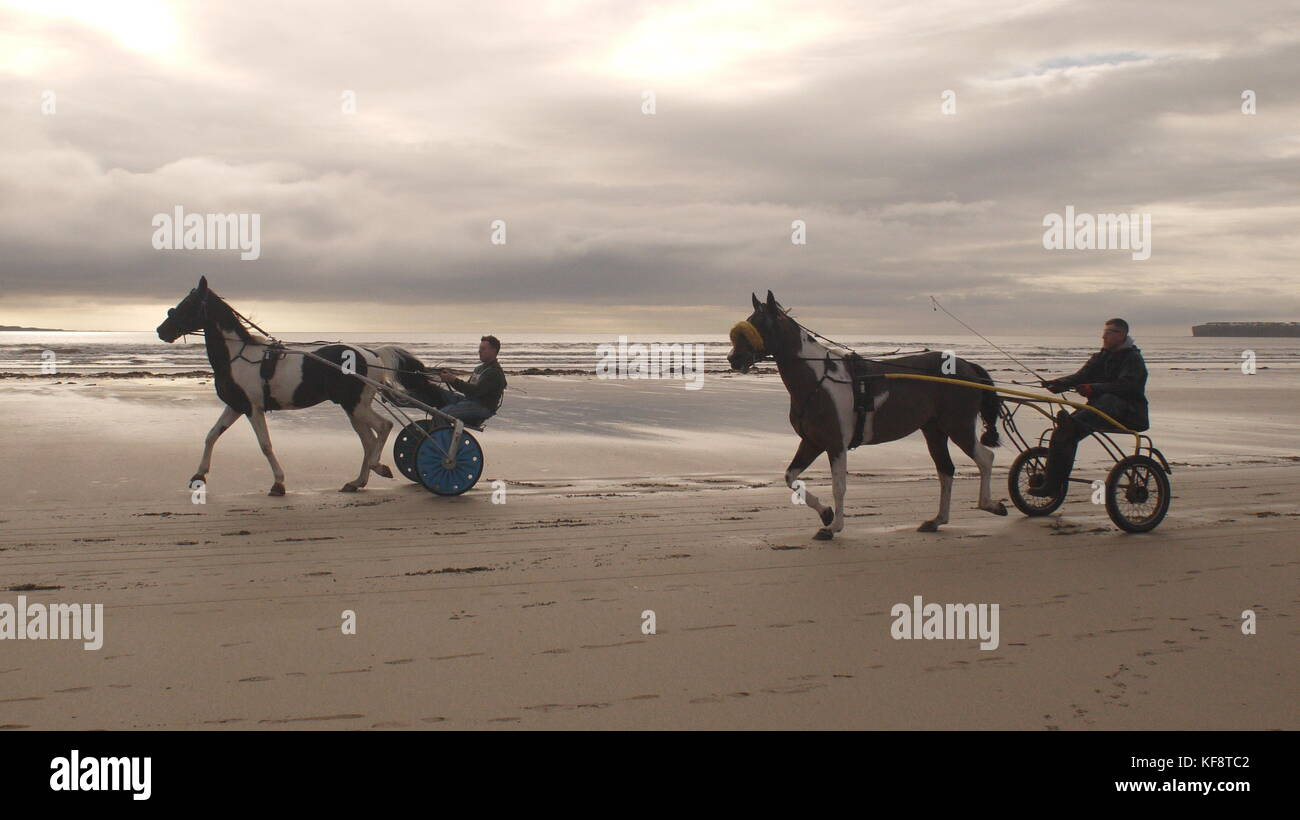 Tandem horse trap on a beach in Ireland. A horse and cart go up and down a beach on the West coast of Ireland. - Stock Image