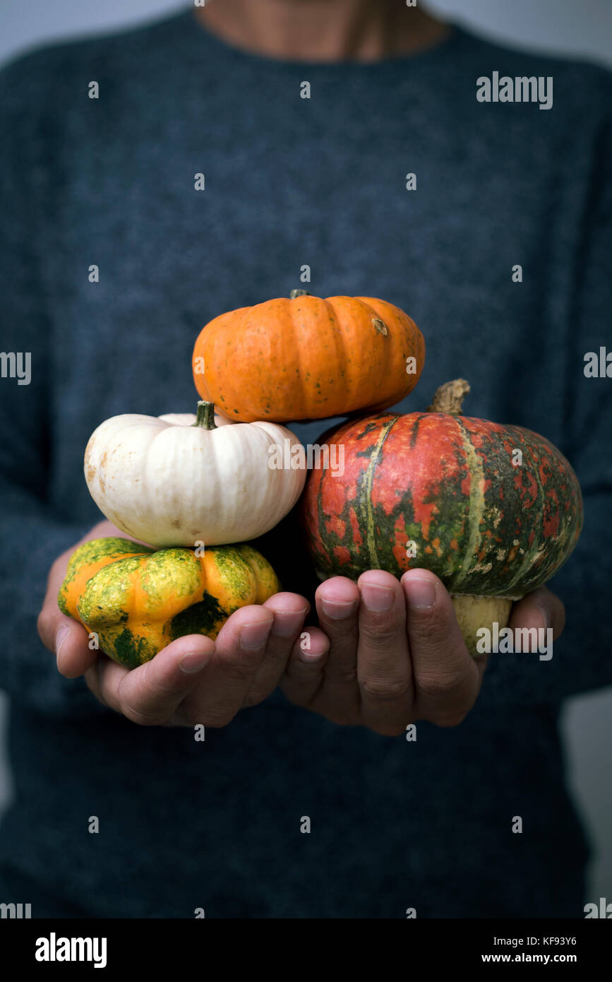 closeup of a young caucasian man with an assortment of different pumpkins in his hands - Stock Image