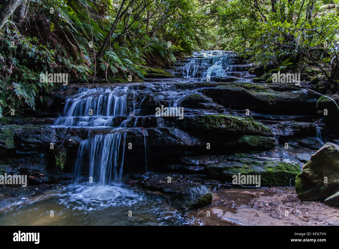 The Leura Cascades, Blue Mountains National Park, NSW, Australia Stock Photo