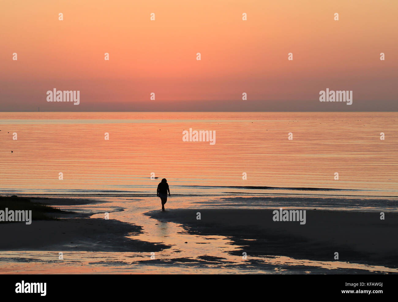 A silhouette of a solitary woman walking back from the shore as the sun sets at Skaket Beach on Cape Cod Bay, Orleans, Stock Photo