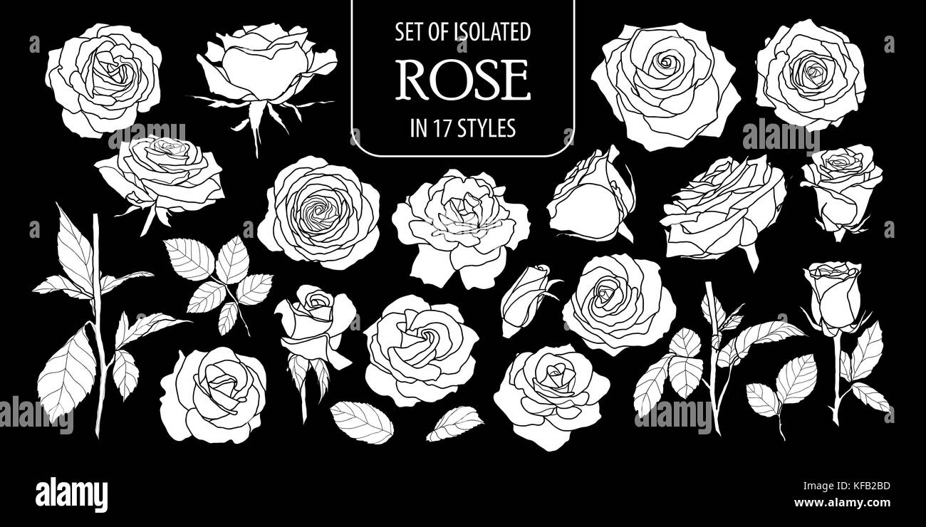Set Of Isolated White Silhouette Rose In 17 Styles Cute Hand Drawn