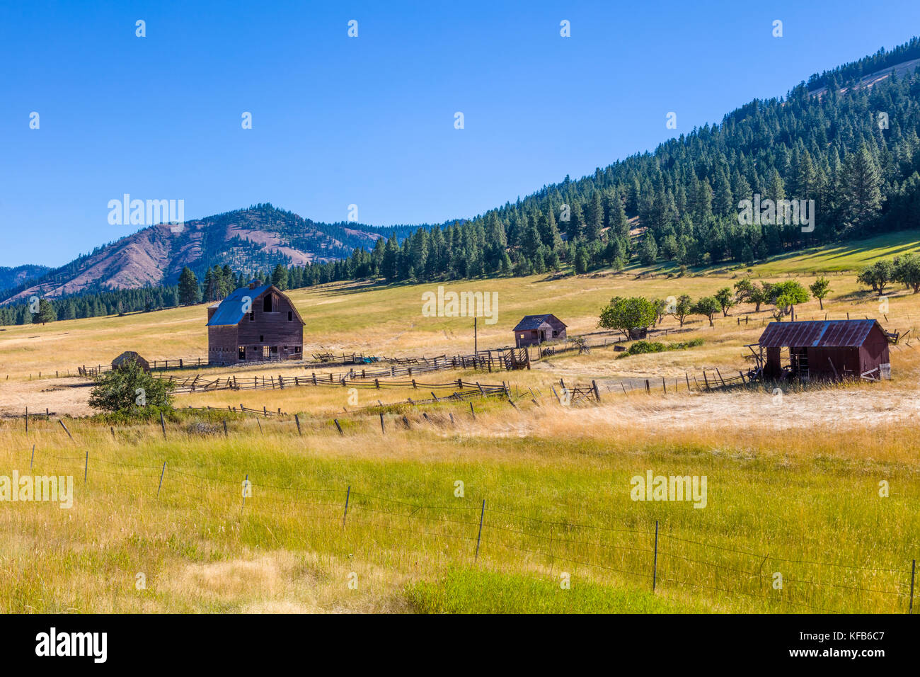Old barn along Rt 97 in north western Washington State in the United States - Stock Image