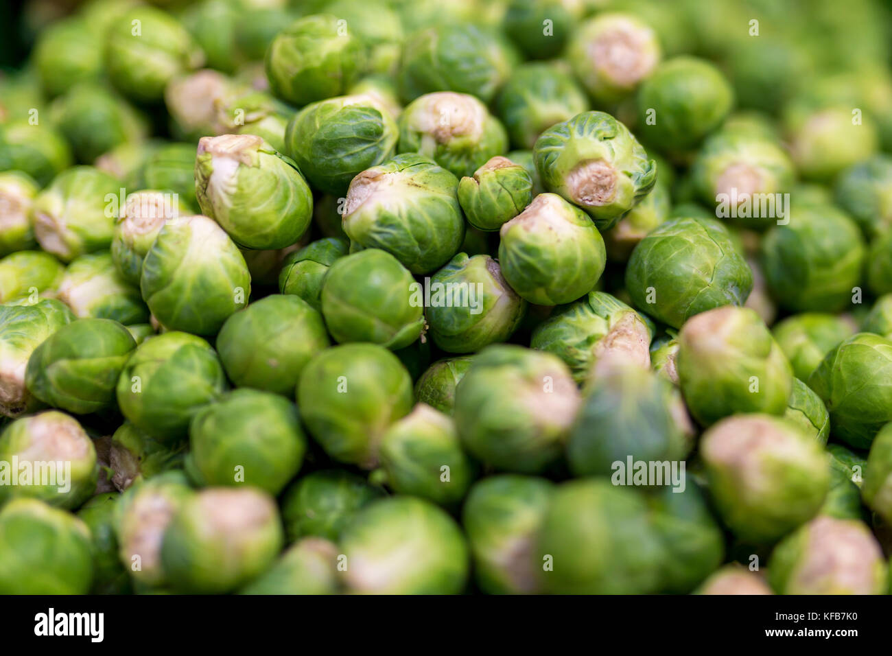 Close up of delicious and colourful vibrant brussel sprouts on a market stall in England, UK - Stock Image