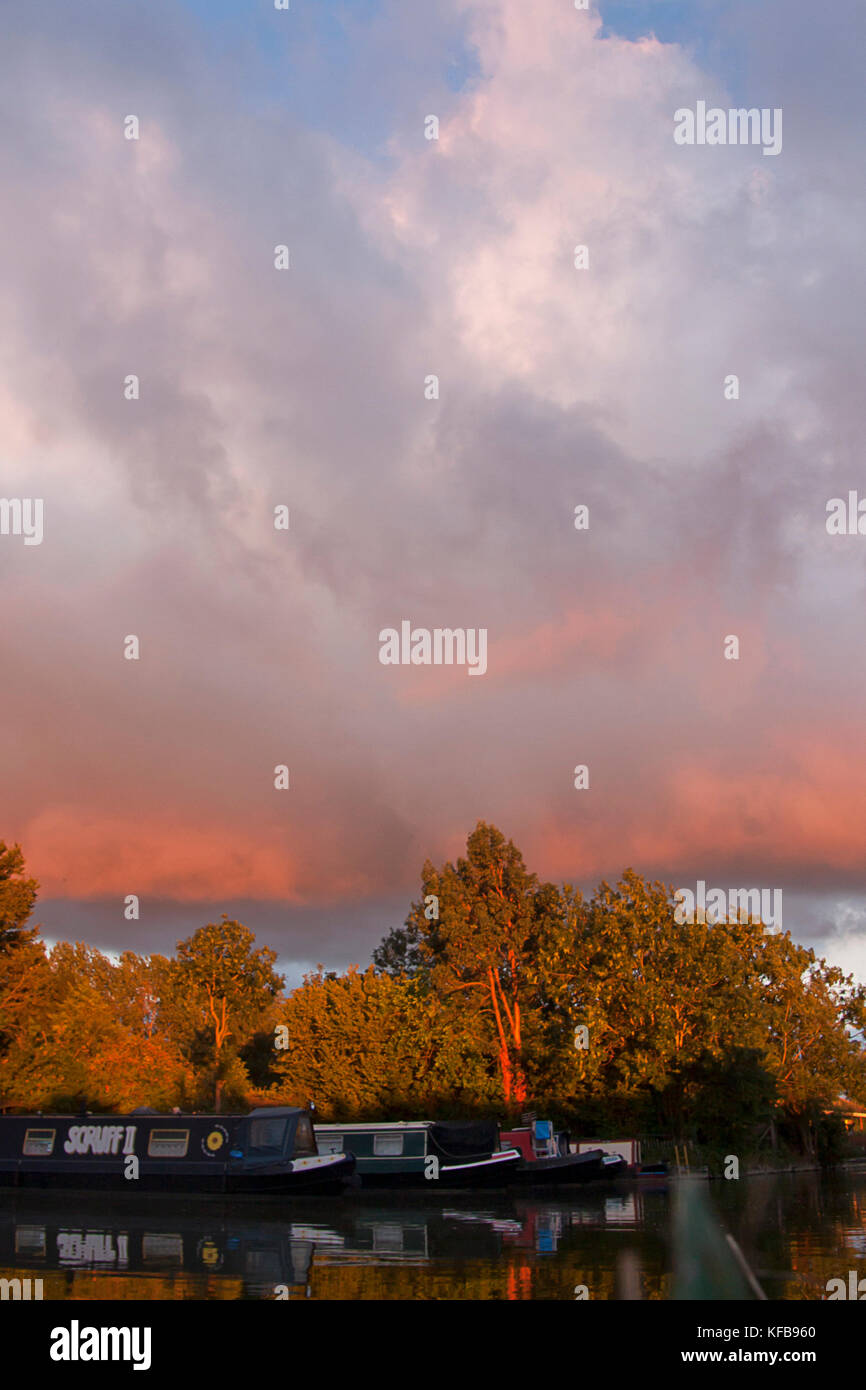 narrowboats at sunset, Cooks Wharf, Grand Union Canal Outer Aylesbury Ring, Cheddington, Buckinghamshire, England - Stock Image