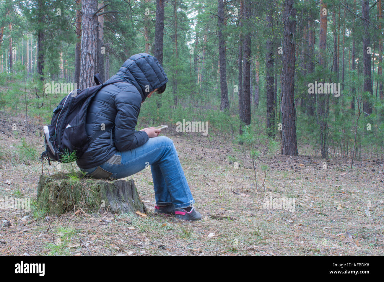 A woman sits on a stump in the woods early in the morning and checks her cellphone.  A female hiker, backpacker - Stock Image