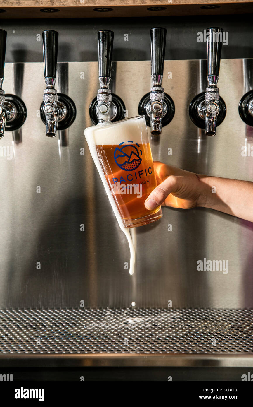 USA, Oregon, Bend, Pacific Pizza and Brew, pouring a pint of beer - Stock Image