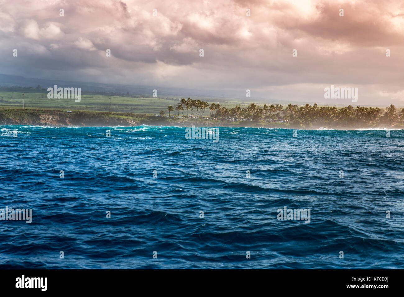 USA, HAWAII, Maui, Jaws, the view seen from out at Peahi on the Northshore - Stock Image