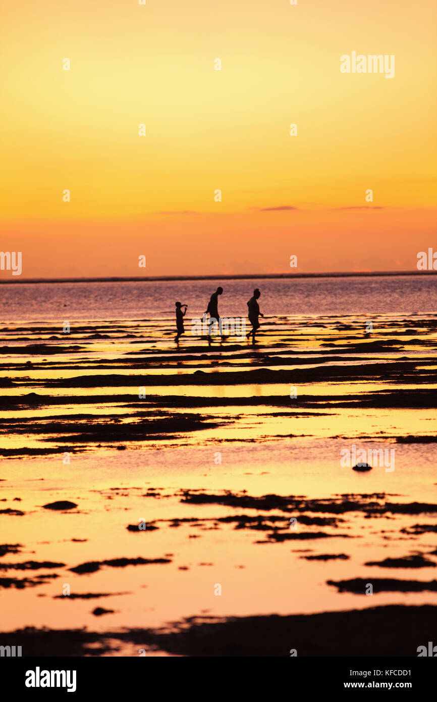 MAURITIUS, a family searches for food in the flats at low tide, Bel Ombre, Indian Ocean at sunset - Stock Image