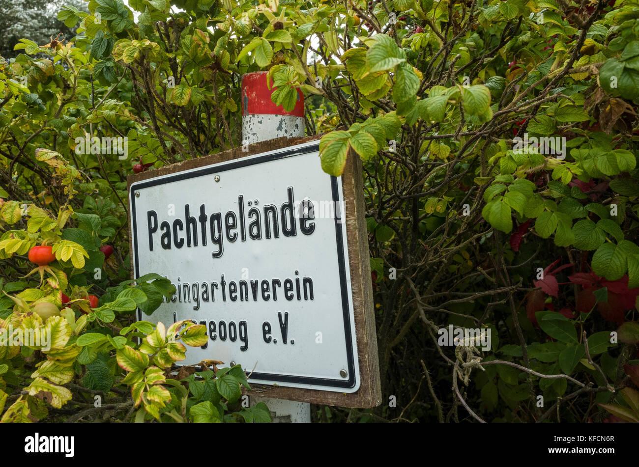 Pachtgelände Kleingartenverein Langeoog. Deutschland.  Germany.  The old ring road that ran around the  WWII - Stock Image