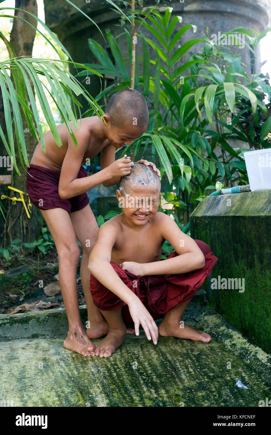 Myanmar (formerly Burma). Mon State. Mawlamyine (Moulmein). Gaungse Kyun, Shampoo island. Young monks shaving their - Stock Image