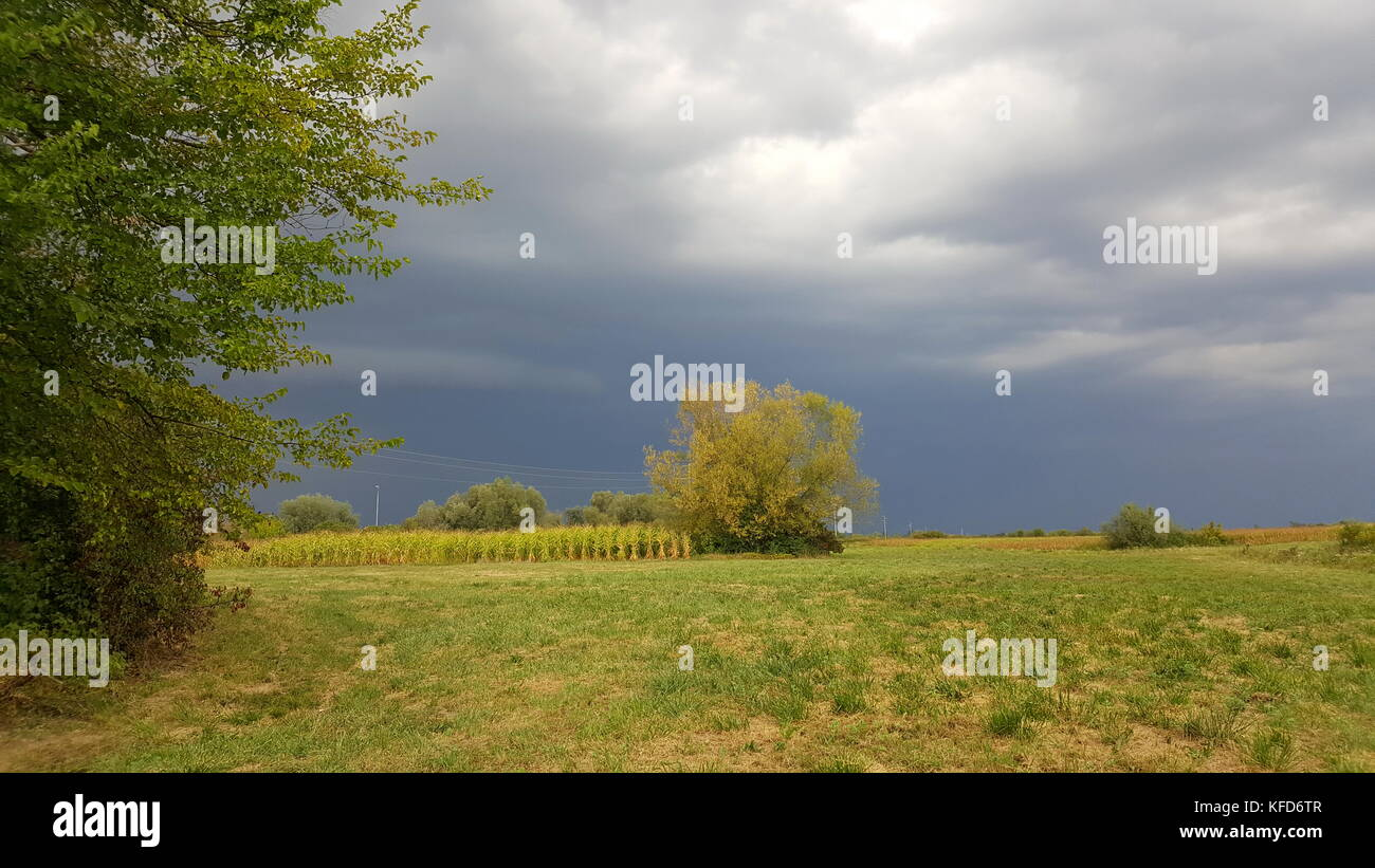 Massive storm with multiple clouds preparing and coming closer over field and trees - Stock Image