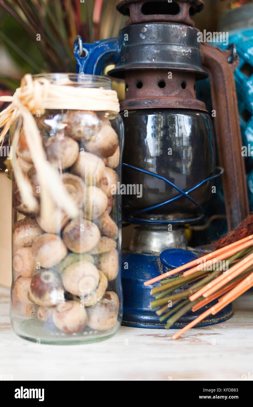 Hazelnut and gas lamp - Stock Image