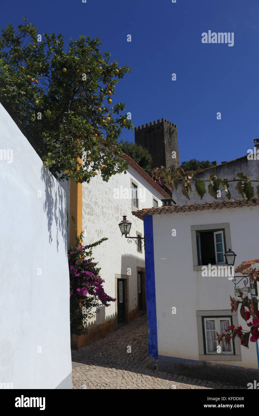 Blue skies and a lemon tree overhanging the narrow cobbled streets of the medieval town of Obidos, Portugal. The - Stock Image