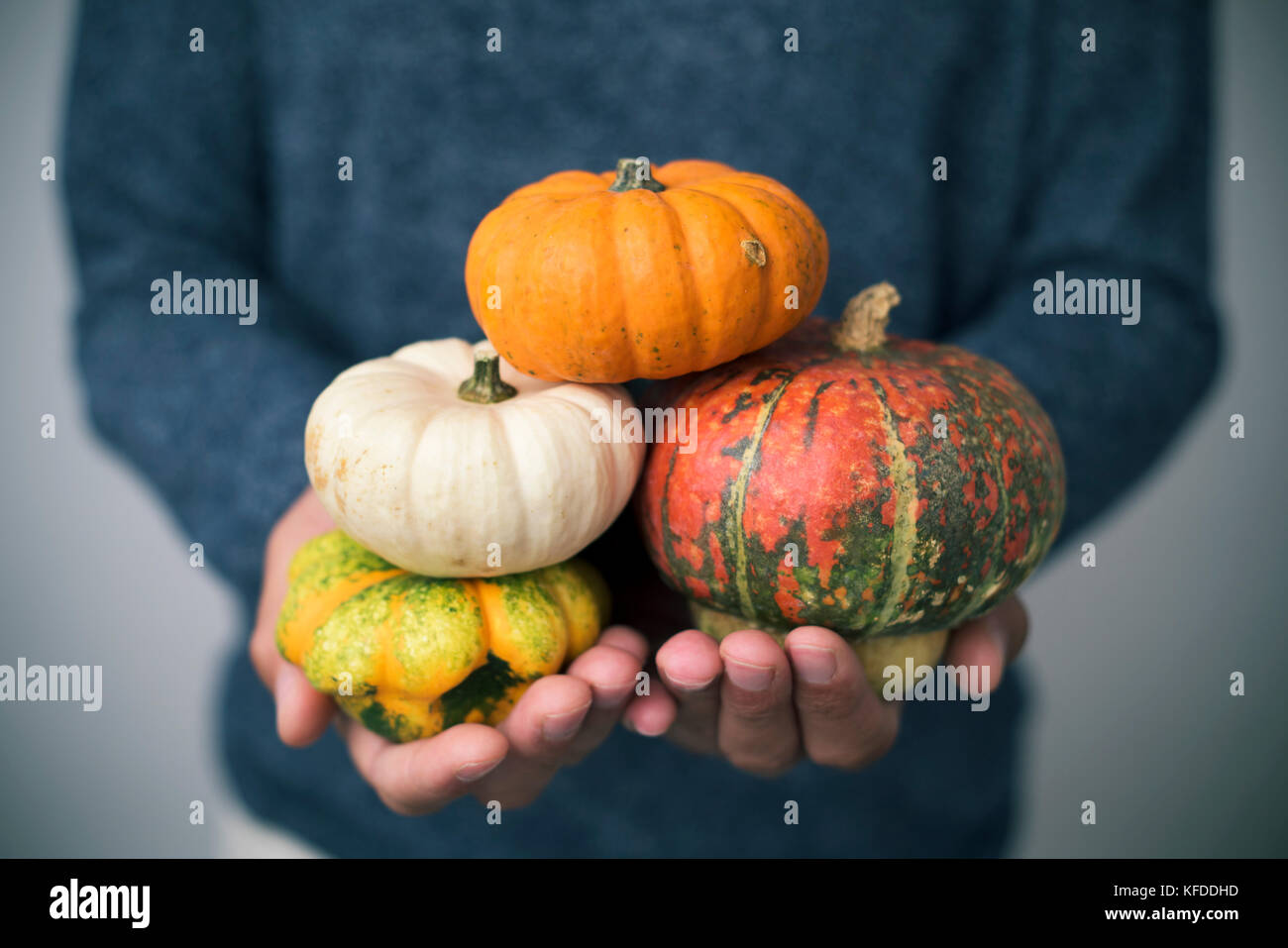 closeup of a young caucasian man with an assortment of different pumpkins in his hands Stock Photo