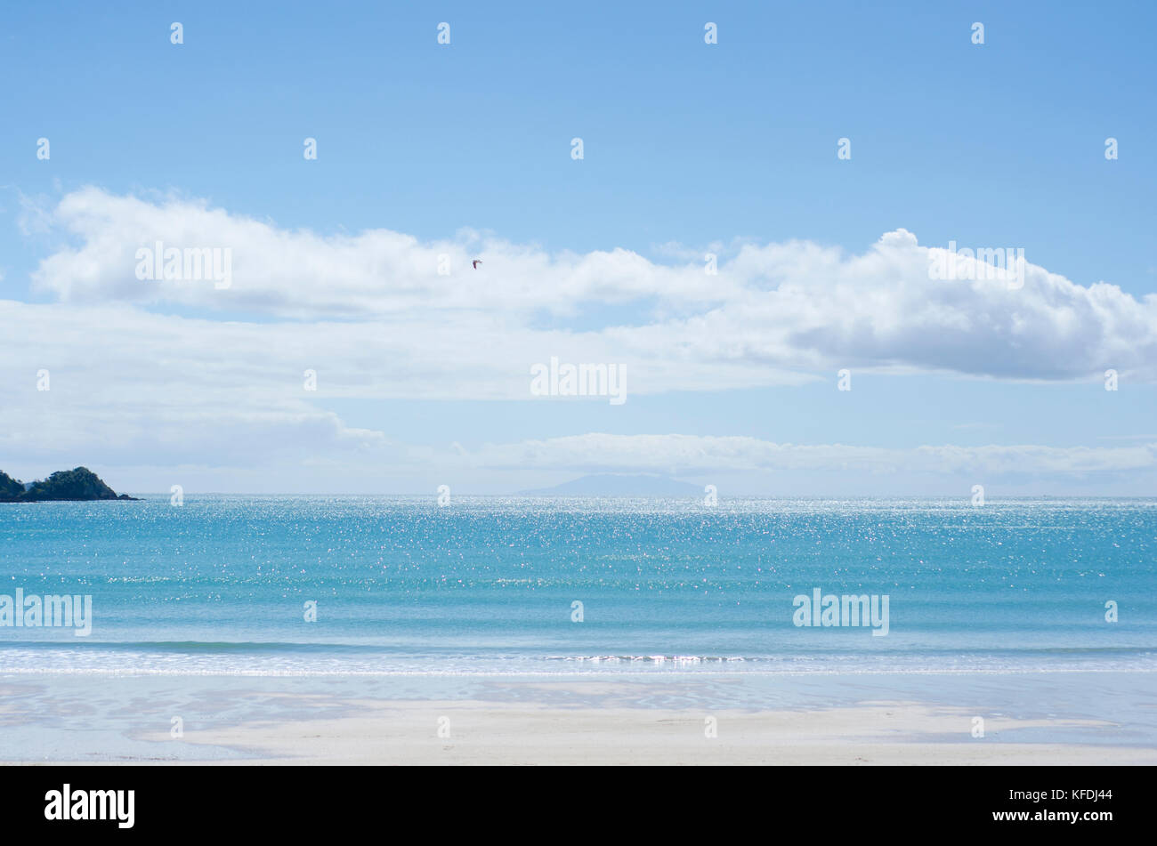 Little Oneroa beach in Waiheke Island, Hauraki Gulf, New Zealand - Stock Image
