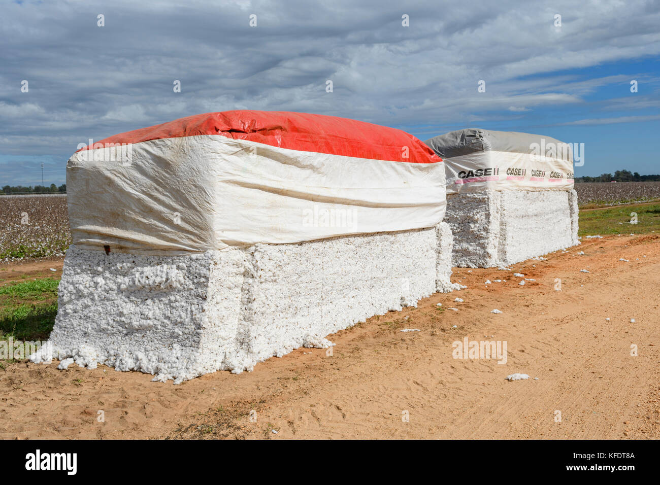 Large freshly picked cotton bales on a farm road in rural central Alabama, USA. - Stock Image