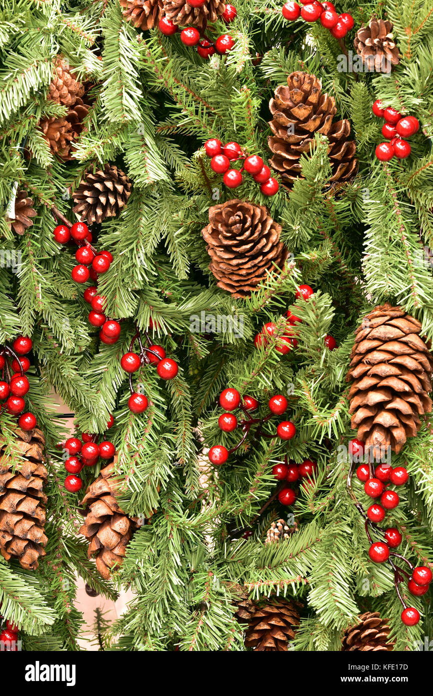 Christmas decorations in the form of pine and fir cones with holly and red berries hanging on an xmas tree for the - Stock Image