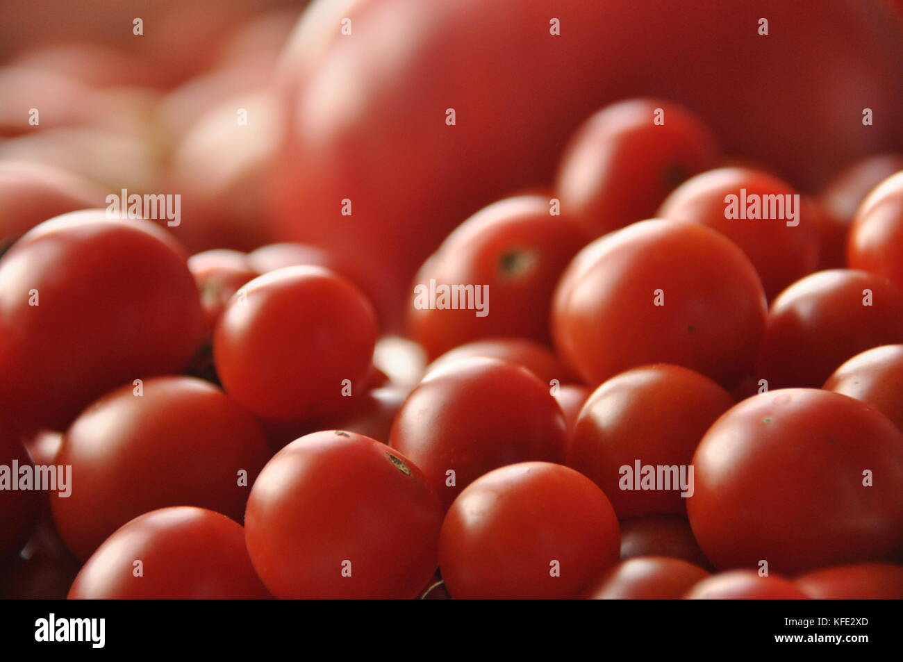 Picking tomatoes. Tomato and raspberry cocktail. Vegetables. - Stock Image