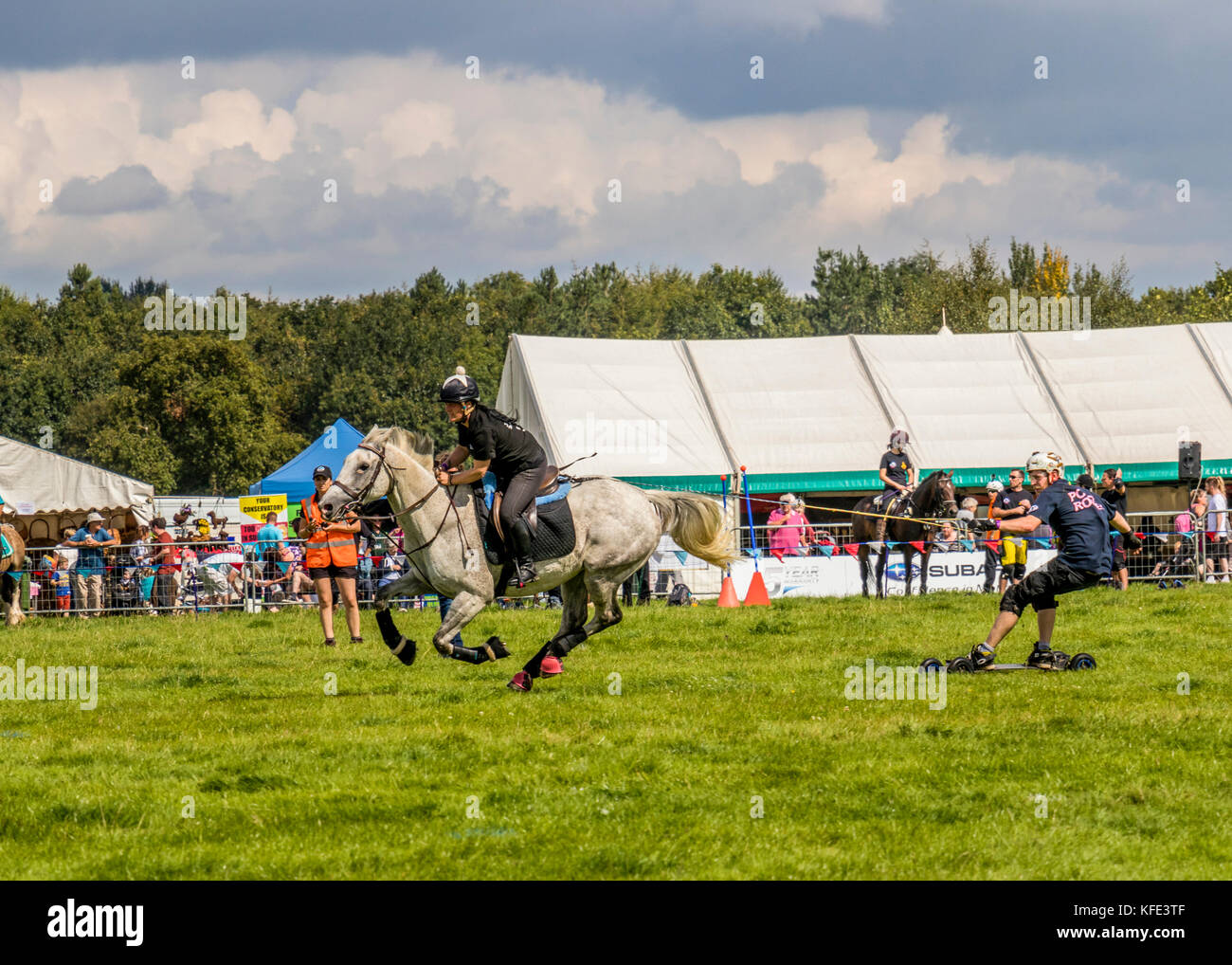 Horseboarding at Cheshire and Country fair Tabley Showground Cheshire UK Stock Photo