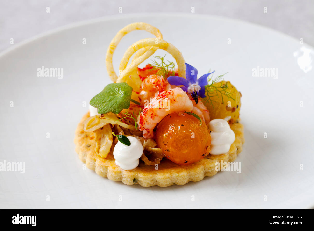 Crayfish, fennel, crispy potato, tomatoes and goat cheese cream on thyme shortcrust biscuit - Stock Image