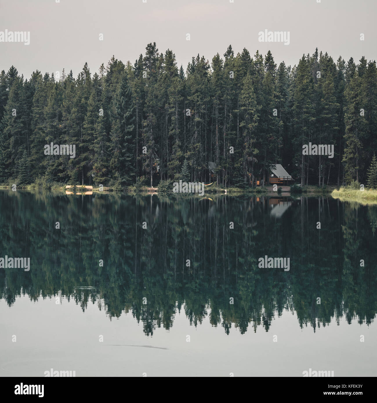 Cabin reflection with forest view - Stock Image