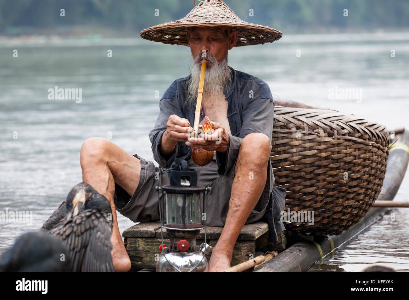 4afc3b6c An old fisherman prepares for fishing in a traditional way using hand  cormorant in Li River near Xingping, Yangshuo, Guangxi, China