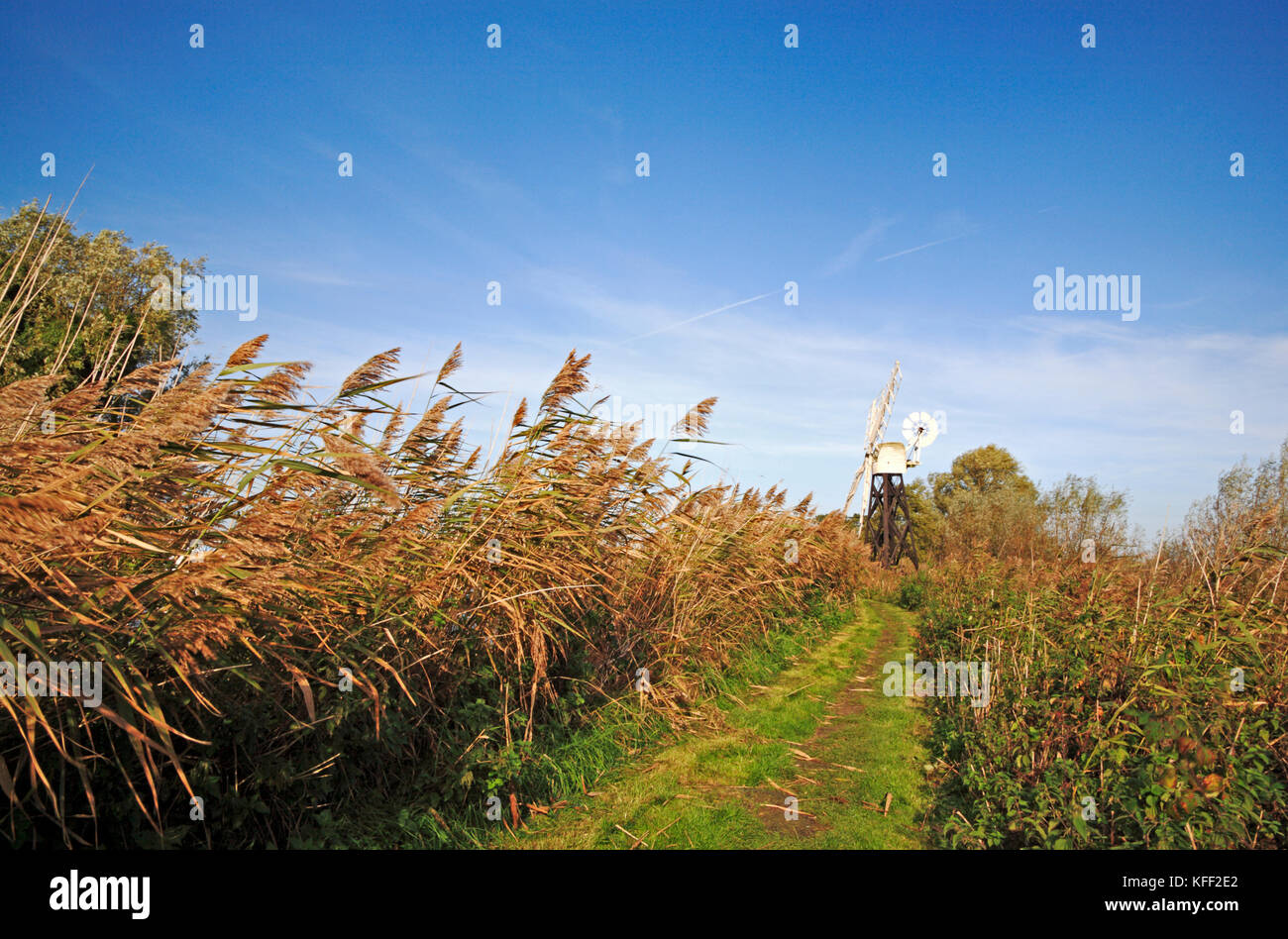 A view along the footpath by the River Ant towards Boardman's Mill at How Hill, Ludham, Norfolk, England, United - Stock Image
