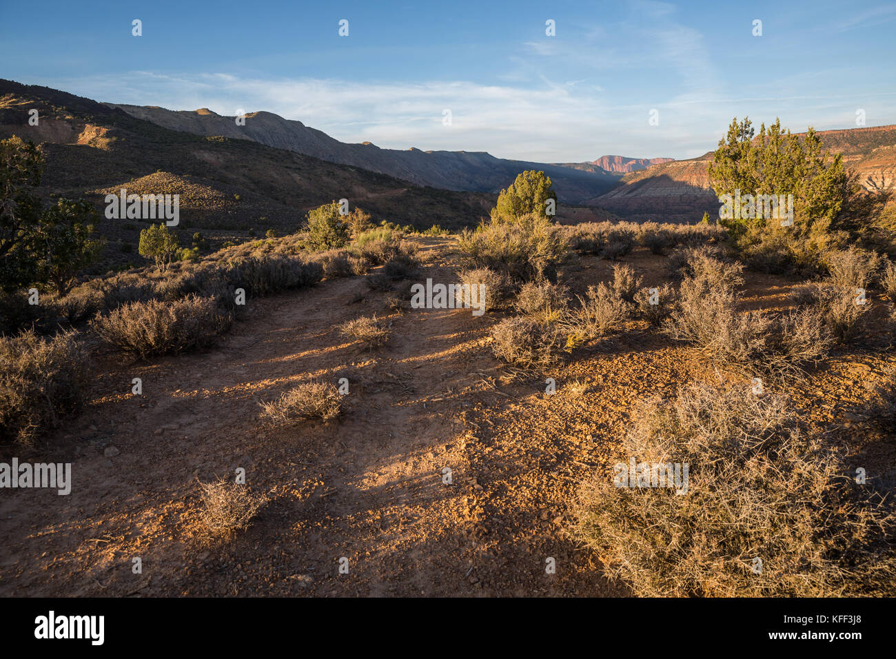 A narrow ATV trail cuts through sage and juniper trees in Southern Utah just before sunset. in the distance the Stock Photo
