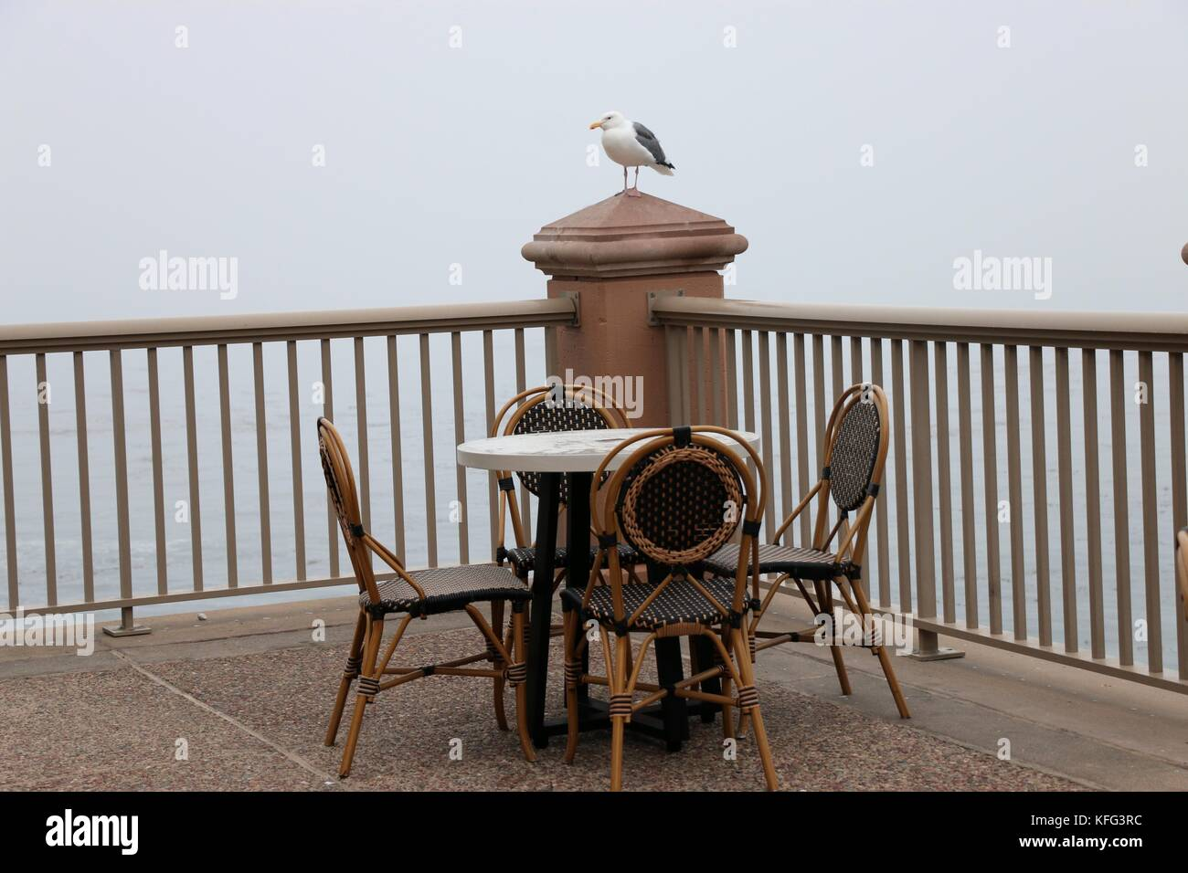 Sea gull perches above a table and chairs. Stock Photo