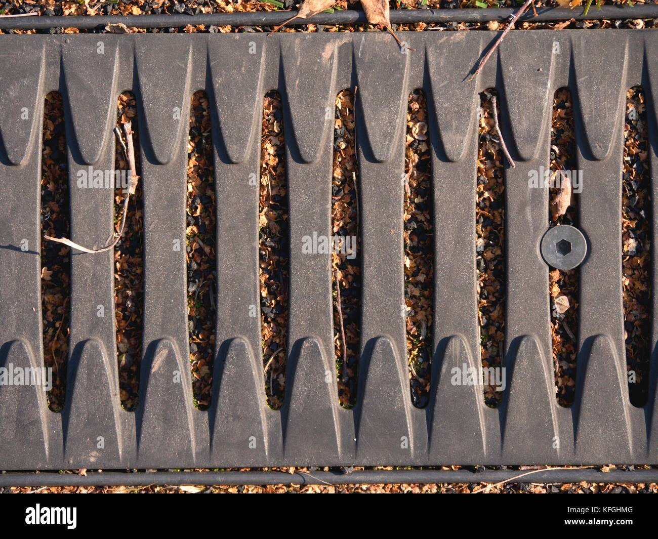 Metal gratin cover drainage system in the midst of cropped grass, screwed cover - Stock Image
