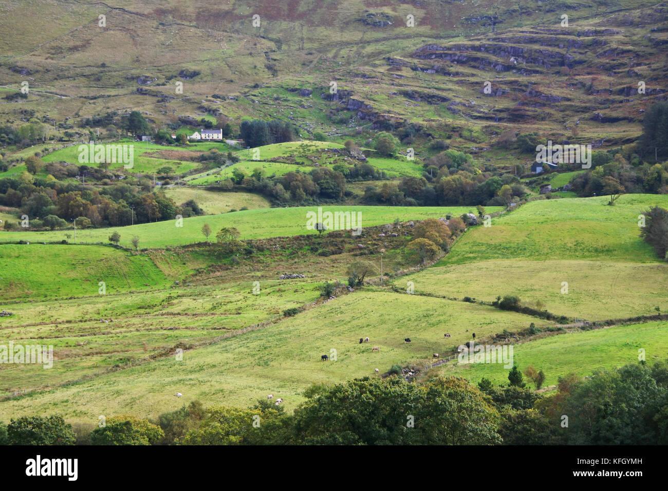 Landscape near Bonane, Kenmare, County Kerry, Ireland - John Gollop - Stock Image
