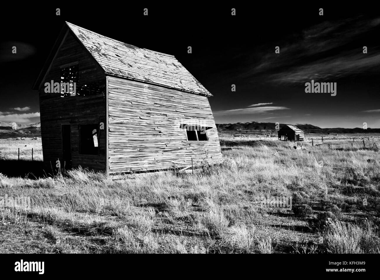 A stark scene of dilapidated old barns twisted in the Colorado wind. - Stock Image