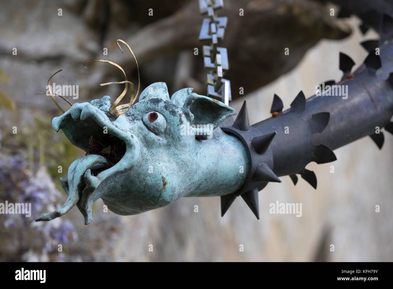 Dragon faced drain pipe on exterior of St Nicholas's church, Hatherop, Cotswolds, Gloucestershire, England, - Stock Image