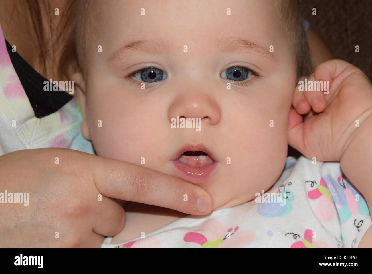 Baby teeth Stock Photo