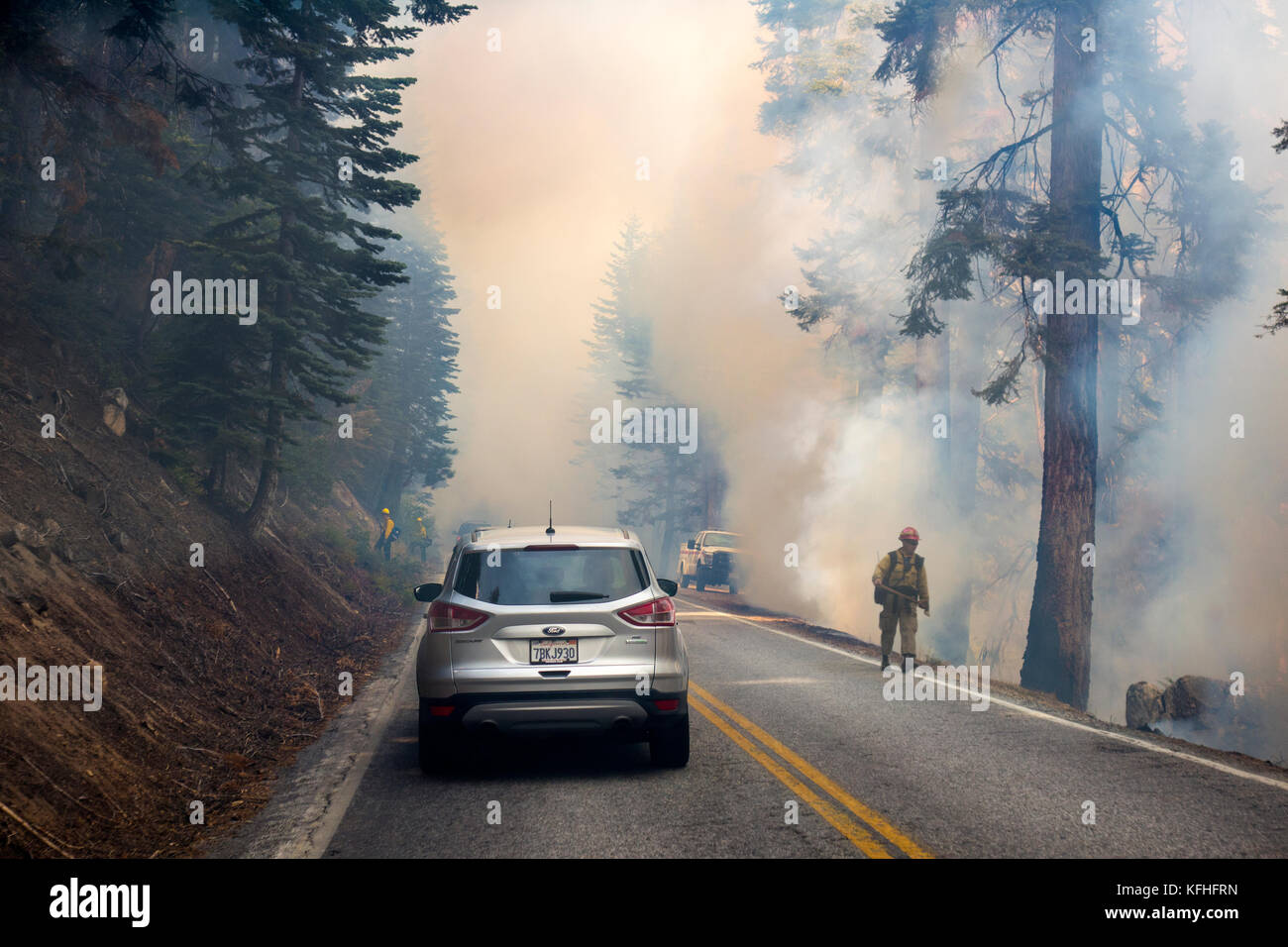 Driving through forest fire in Yosemite National Park. - Stock Image