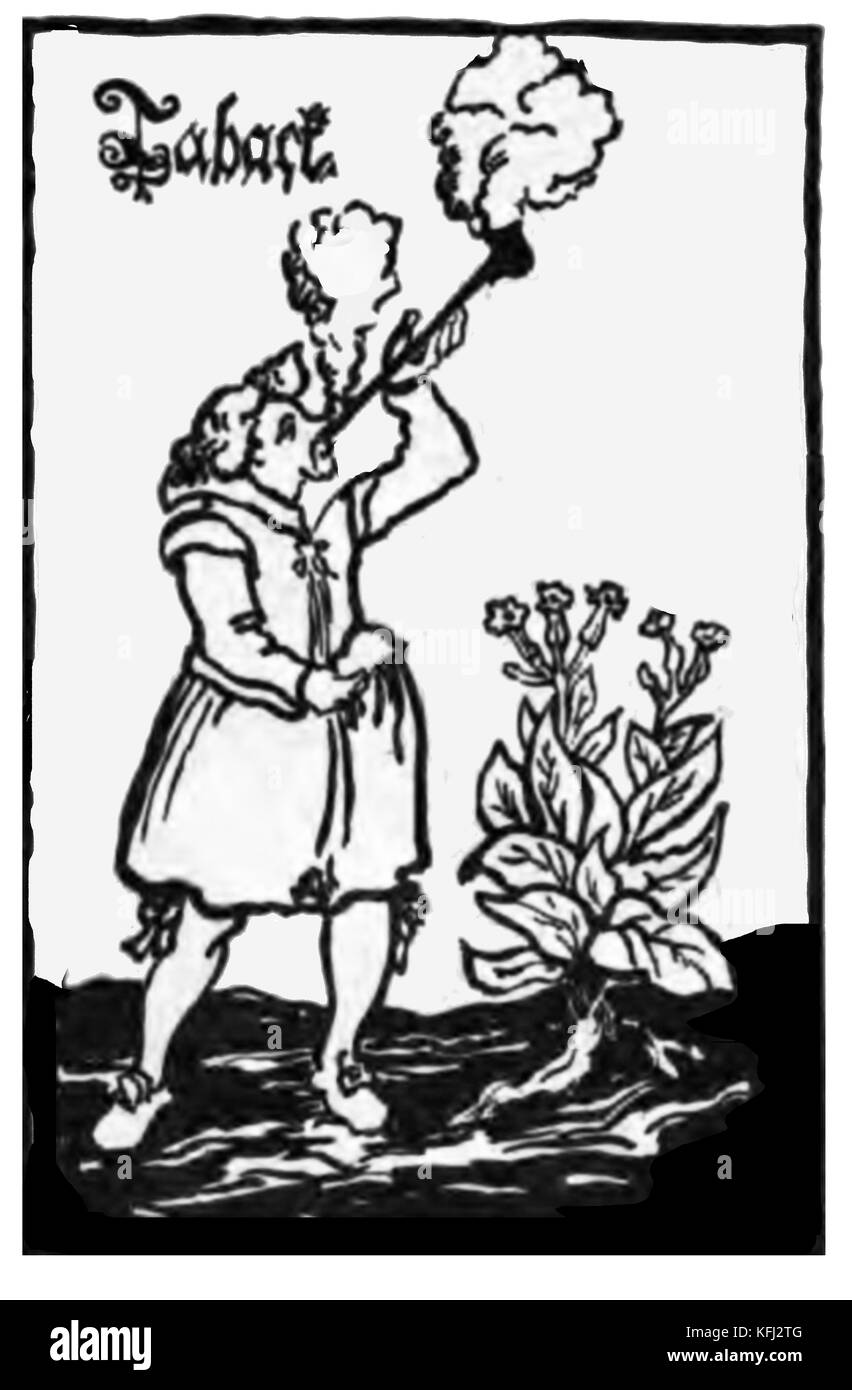 HISTORY OF TOBACCO - An  18th century woodcut showing a smoker and a tobacco plant - Stock Image