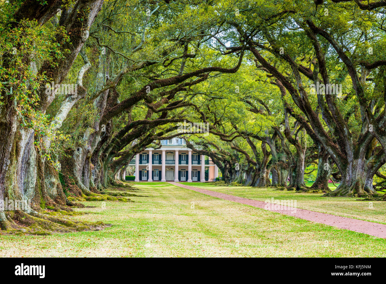 Oak Alley Plantation, a plantation and National Historic Landmark located near the Mississippi River in the community - Stock Image