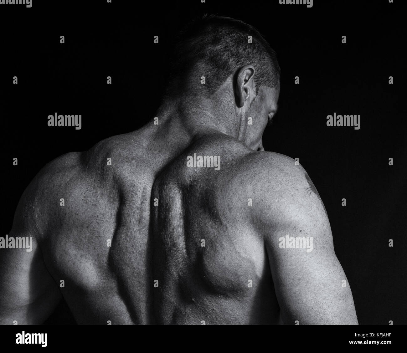 Body Builder High Resolution Stock Photography And Images Alamy