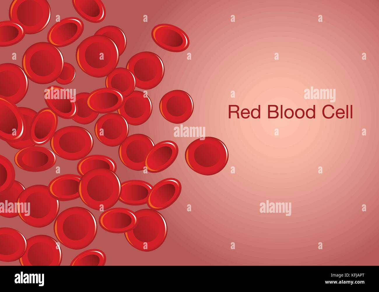 Red blood cells and wording on background. - Stock Image