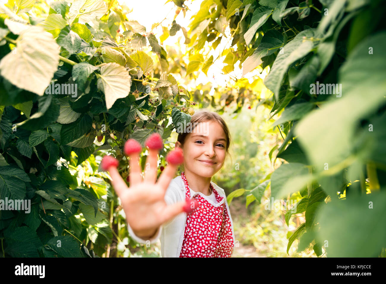 Small girl gardening in the backyard garden. - Stock Image