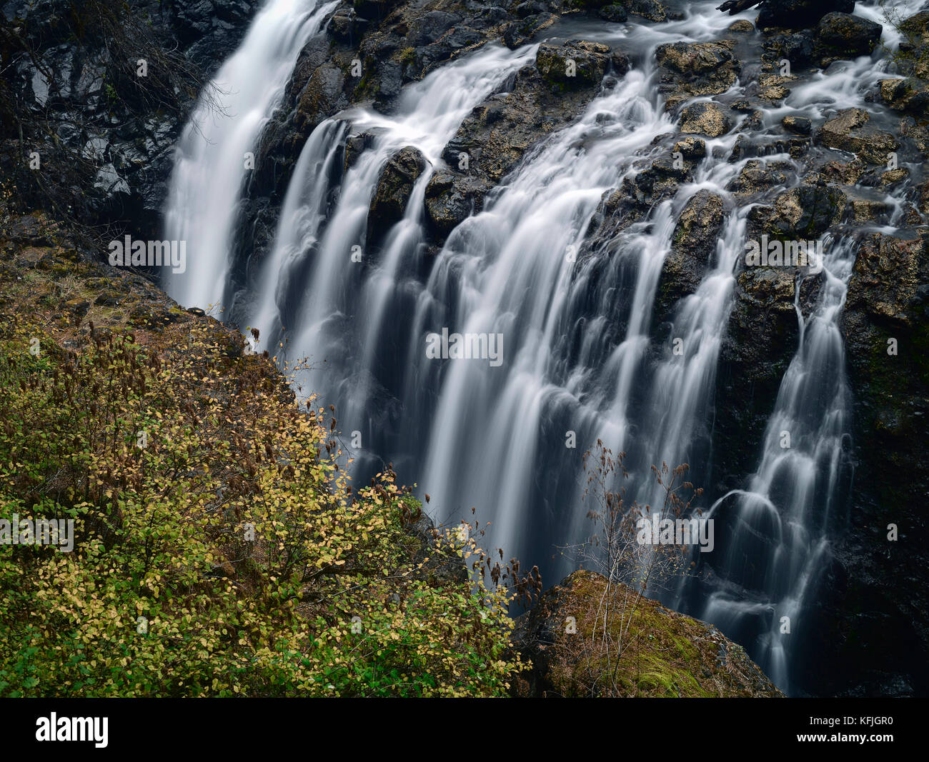 Nature scenery of cascading waterfall in Englishman River Falls Provincial Park. Errington, Vancouver Island, BC, Stock Photo