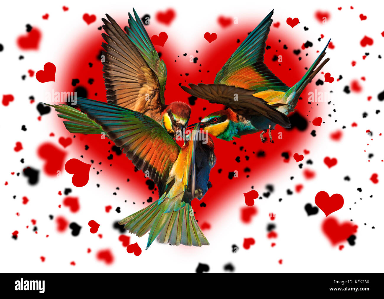 love triangle bird against the background of the hearts - Stock Image