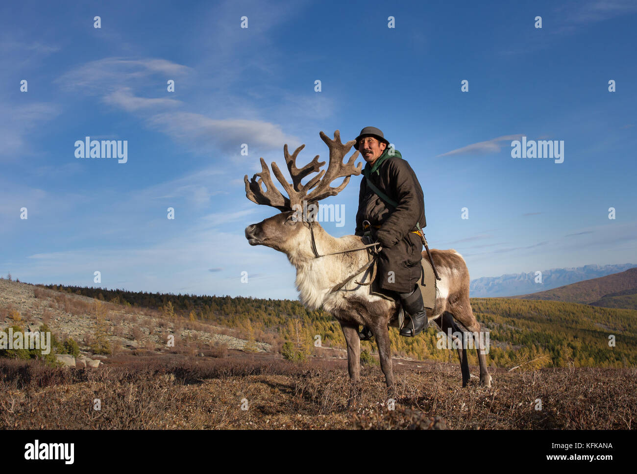 Old Tsaatan nomad man riding a reindeer with a grand set of antlers. Khuvsgul, Mongolia. - Stock Image