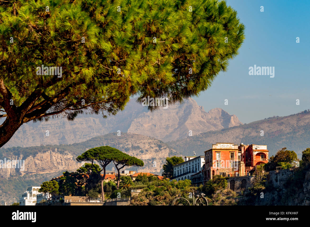 Stone Pine trees and hotels on the cliff top coastline of Sorrento, with mountains in the distance. Sorrento. Italy. - Stock Image