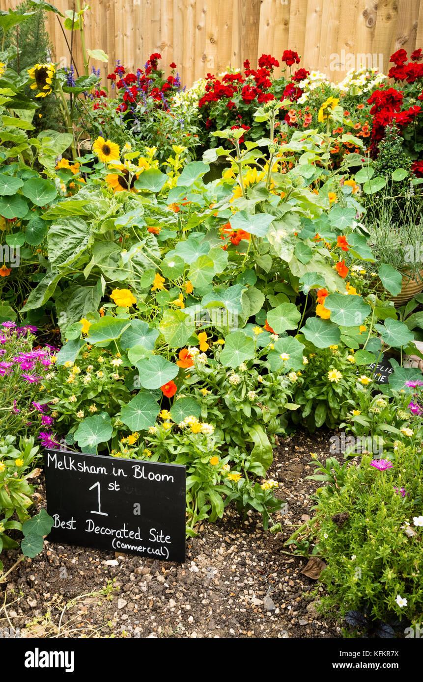 Detail of awardwinning garden in Melksham in Bloom competition featuring gardening for nature - Stock Image