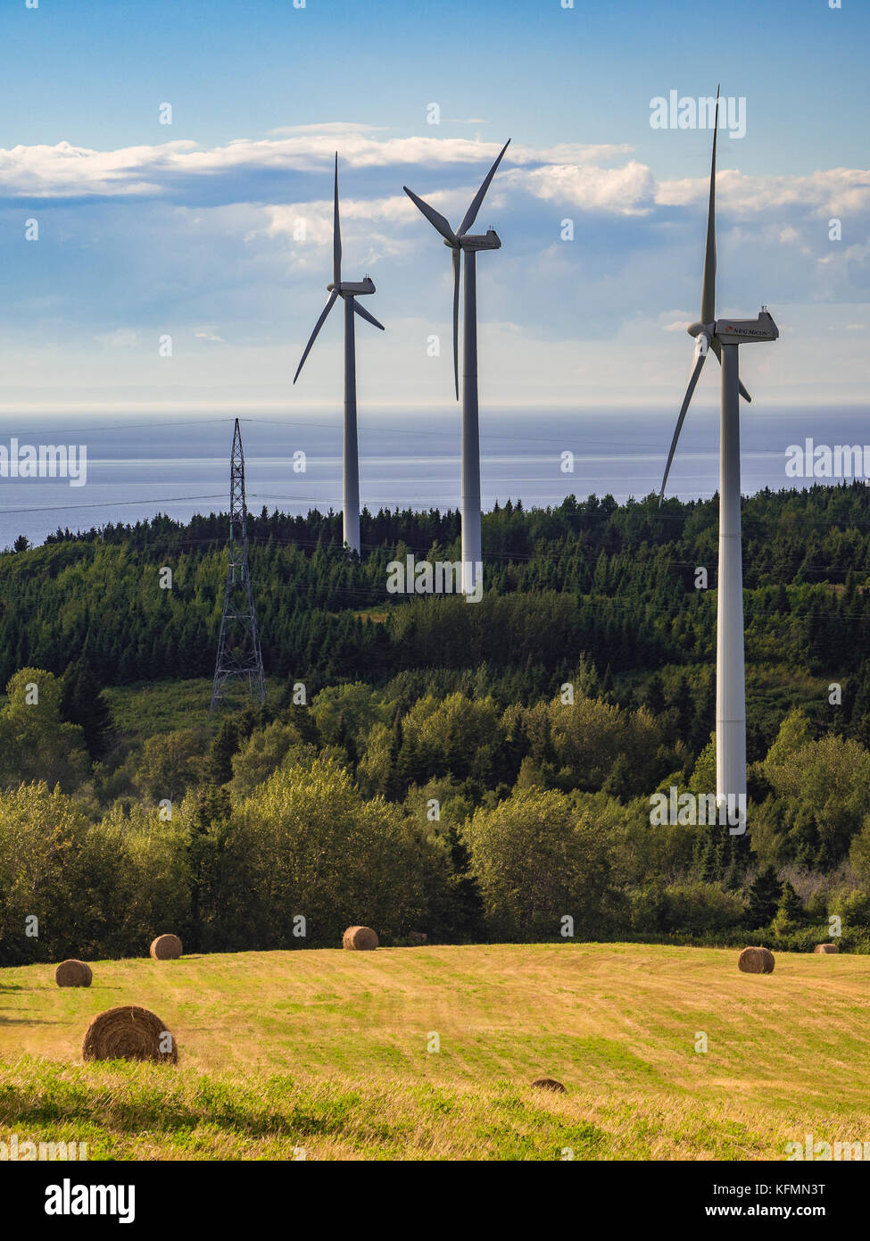 Wind farm, Le Nordais Windmill Park wind generation station, village of Cap-Chat, Gaspe Peninsula, Quebec, Canada - Stock Image